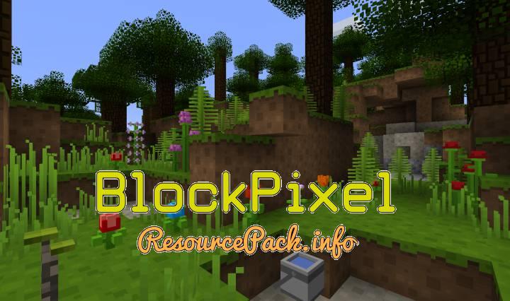 BlockPixel 1.16.5