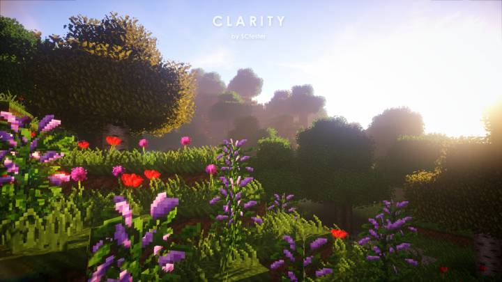 Clarity 1.12.2