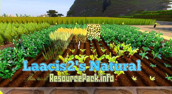 Laacis2's Natural 1.13.2