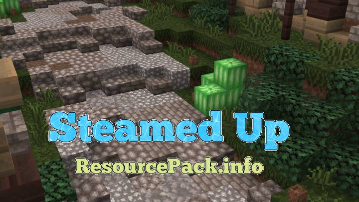 Steamed Up 1.16.4