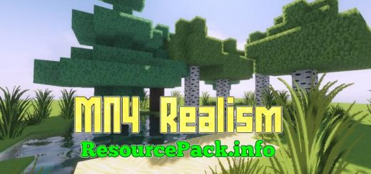 MN4 Realism 1.17.1
