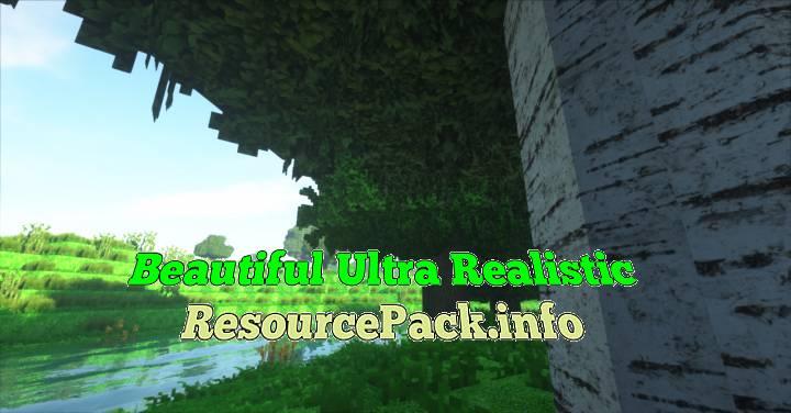 Beautiful Ultra Realistic 1.17.1
