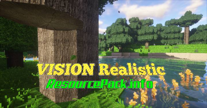 VISION Realistic 1.17.1