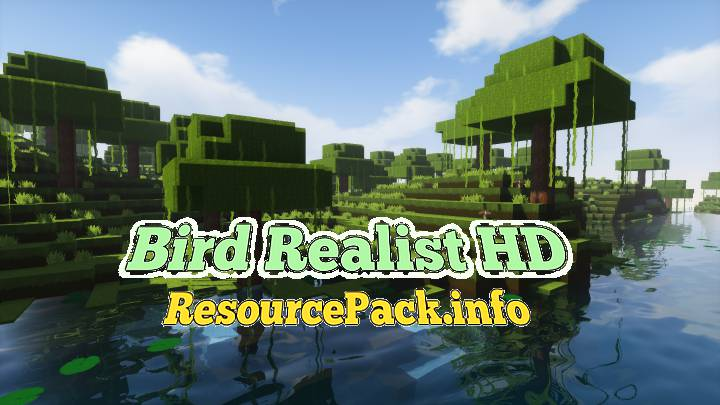 Bird Realist HD 1.17.1