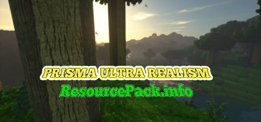 PRISMA ULTRA REALISM 1.14