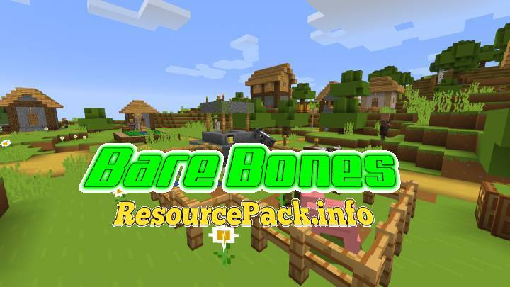 Bare Bones 1.16.5