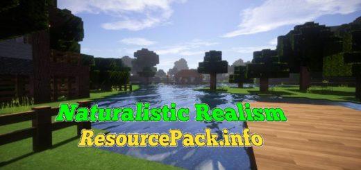 Naturalistic Realism 1.17.1