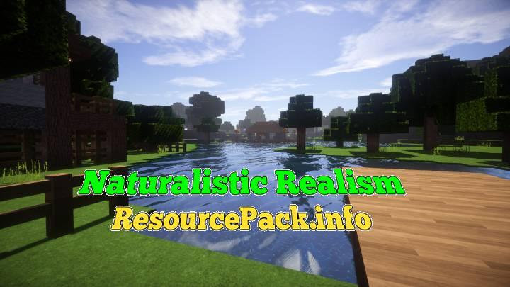 Naturalistic Realism 1.16.5