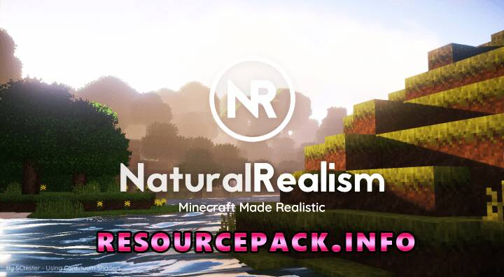 Natural Realsim 1.17.1