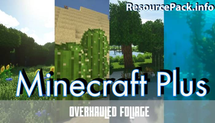 Minecraft Plus 1.16.5