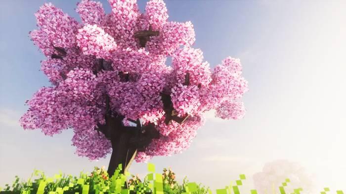Fresh Leaves - Blossoms